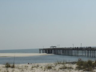 Frequently asked questions for Dauphin island fishing pier